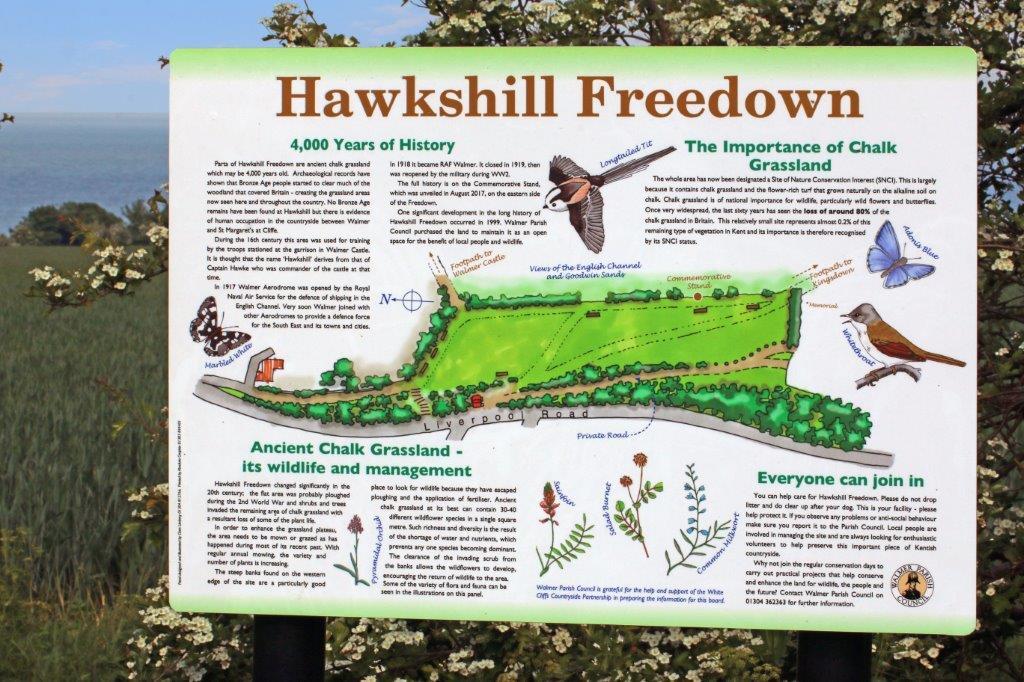 Hawksdown Walmer Deal  (56).jpg