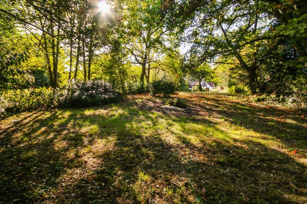 Chaldon Caterham Surrey (5).jpg