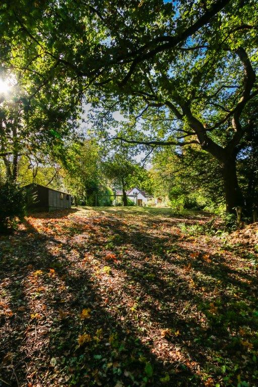 Chaldon Caterham Surrey (6).jpg