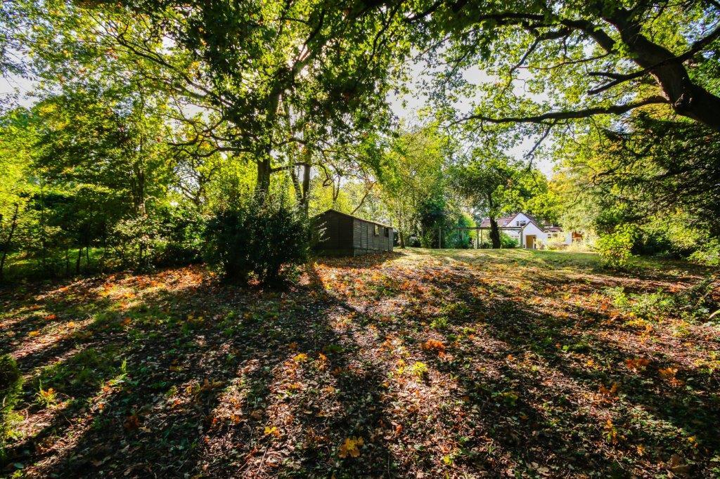 Chaldon Caterham Surrey (7).jpg