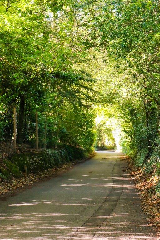 Chaldon Caterham Surrey (39).jpg