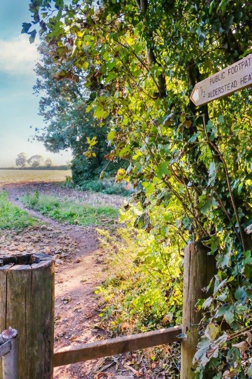 Chaldon Caterham Surrey (42).jpg