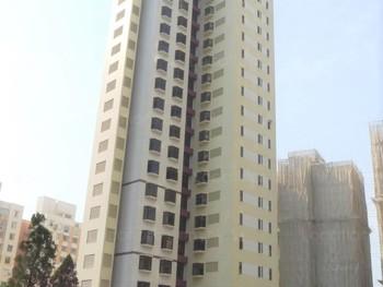 Elm Tree Towers