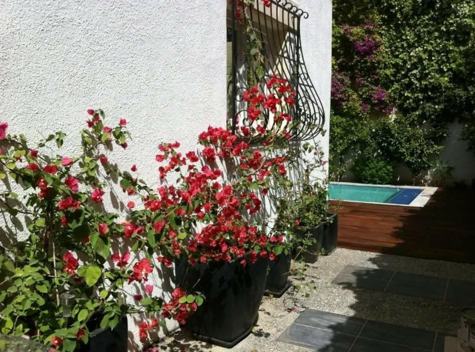 4 bed Villa For Rent in St Julian's, St Julian's - thumb 13