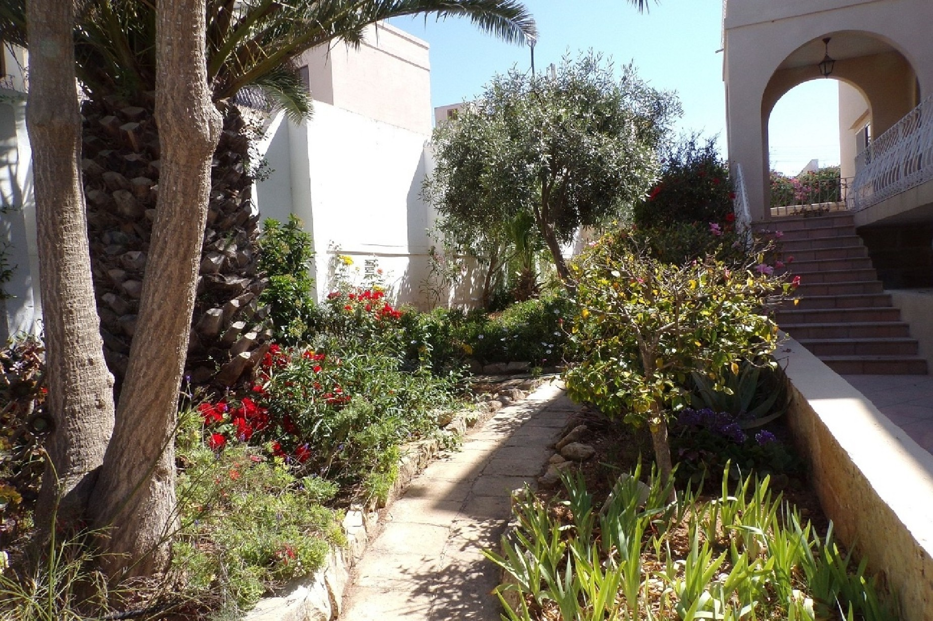 3 bed Villa For Rent in Madliena, Madliena - thumb 8