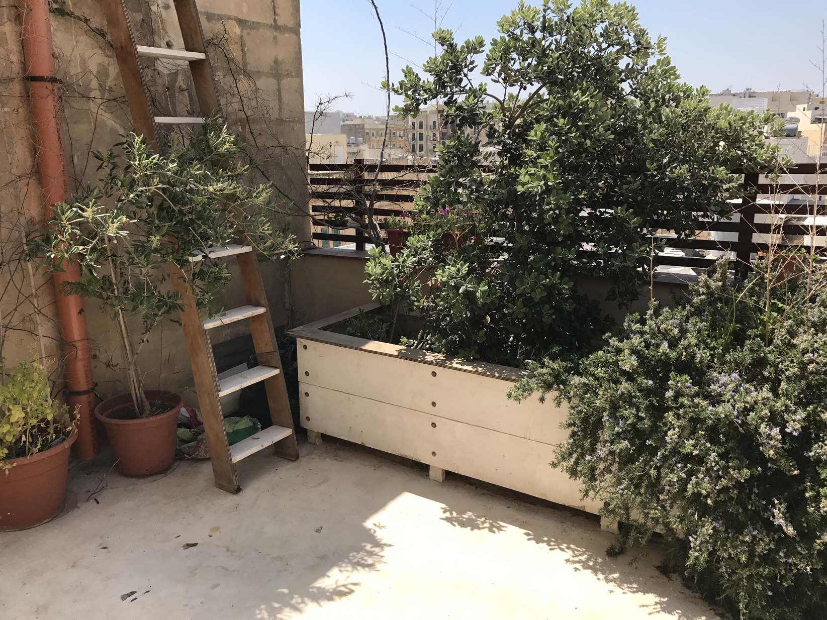 4 bed Town House For Rent in Sliema, Sliema - thumb 13