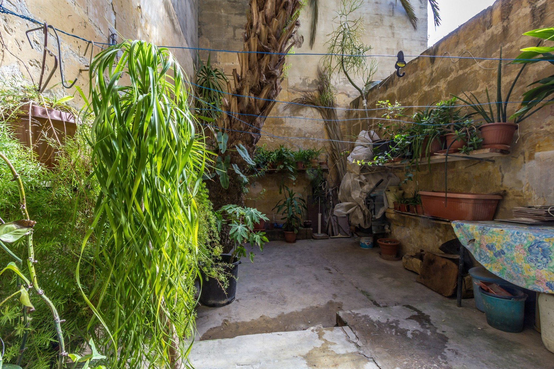 5 bed Town House For Sale in Rabat, Rabat - thumb 3
