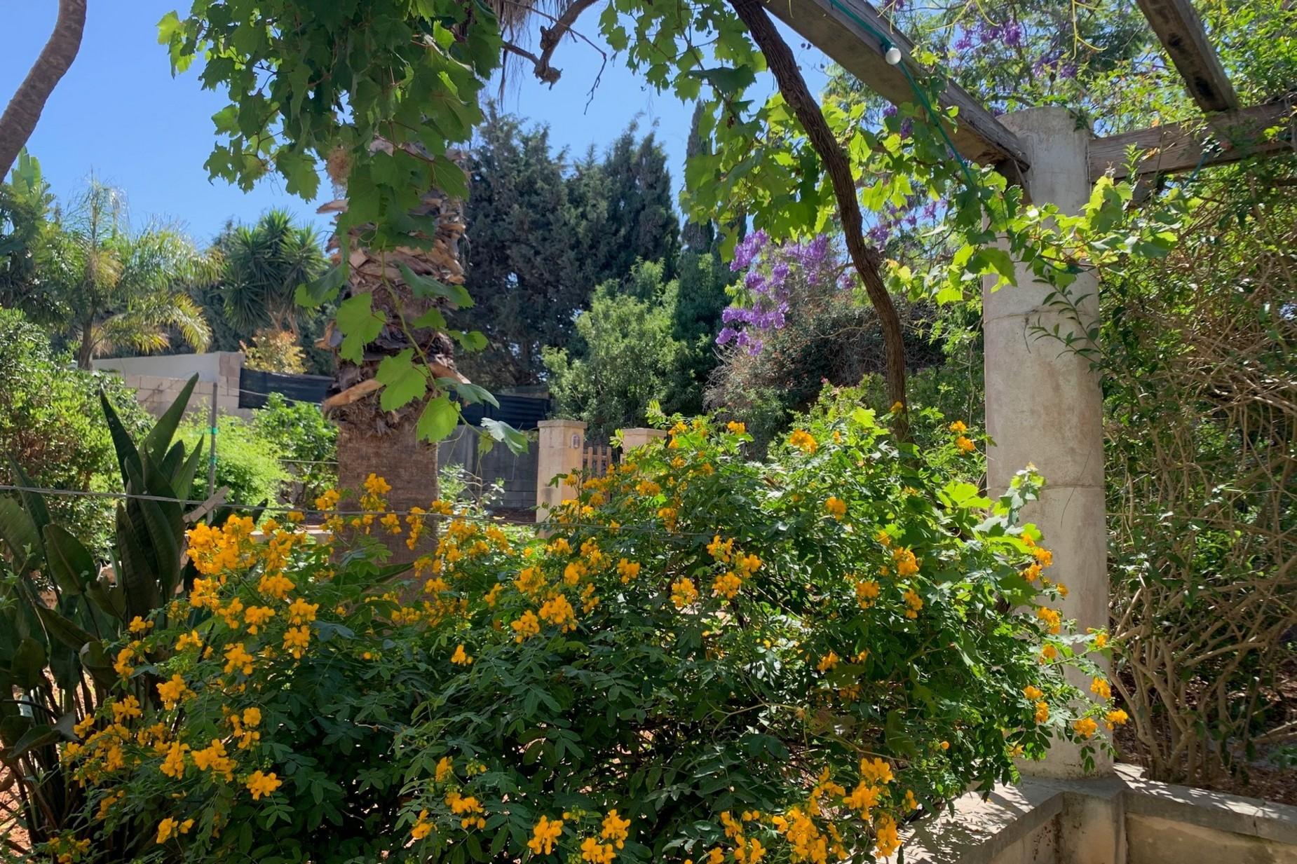6 bed Villa For Rent in Naxxar, Naxxar - thumb 4