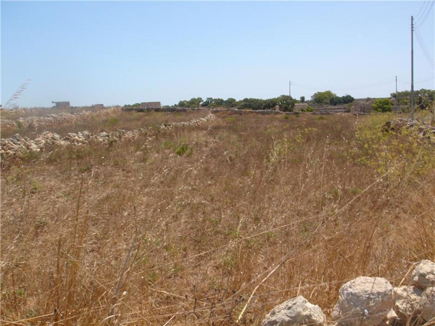 0 bed Plot Residential For Sale in Siggiewi, Siggiewi - thumb 3