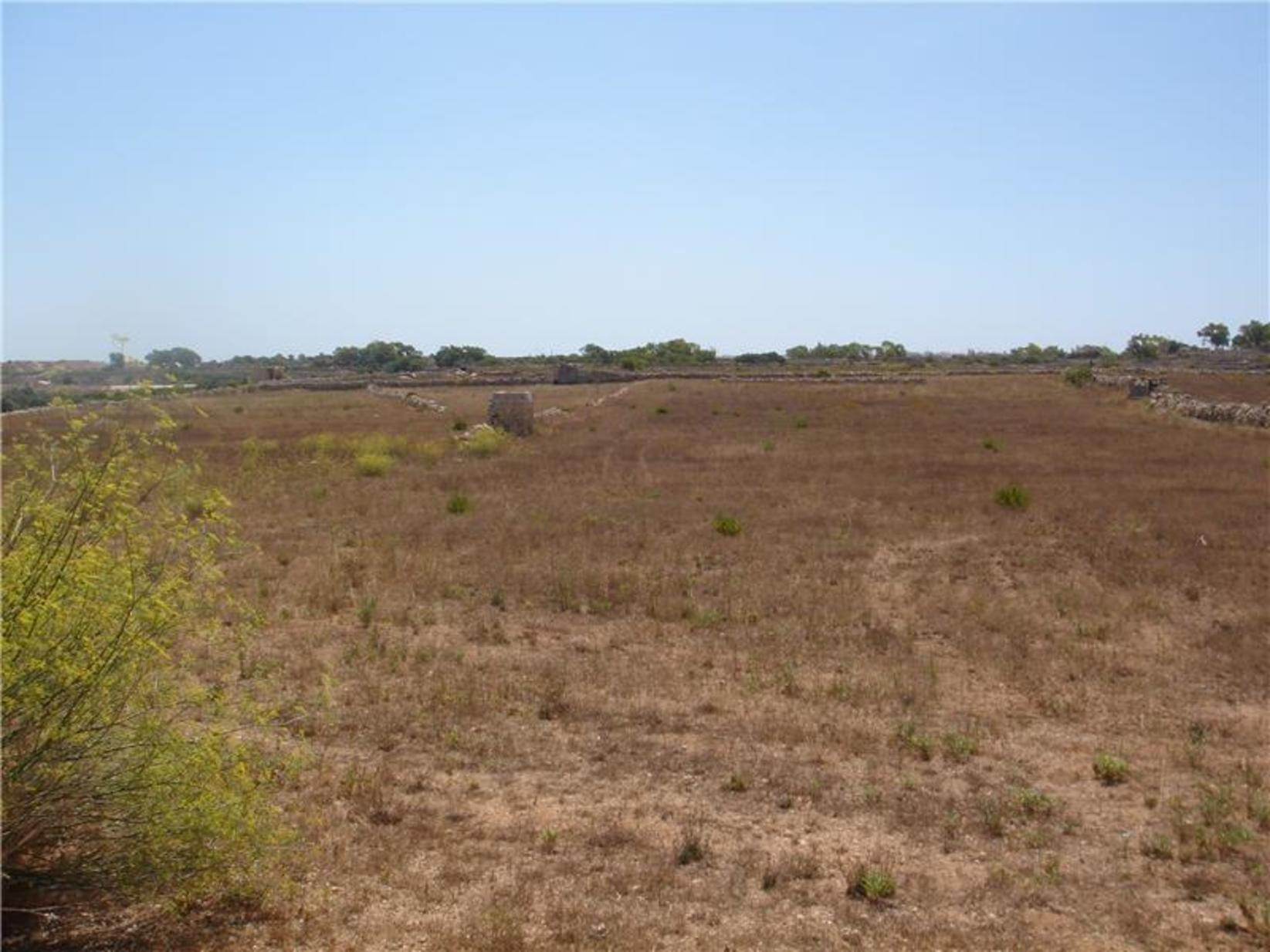 0 bed Plot Residential For Sale in Siggiewi, Siggiewi - thumb 5