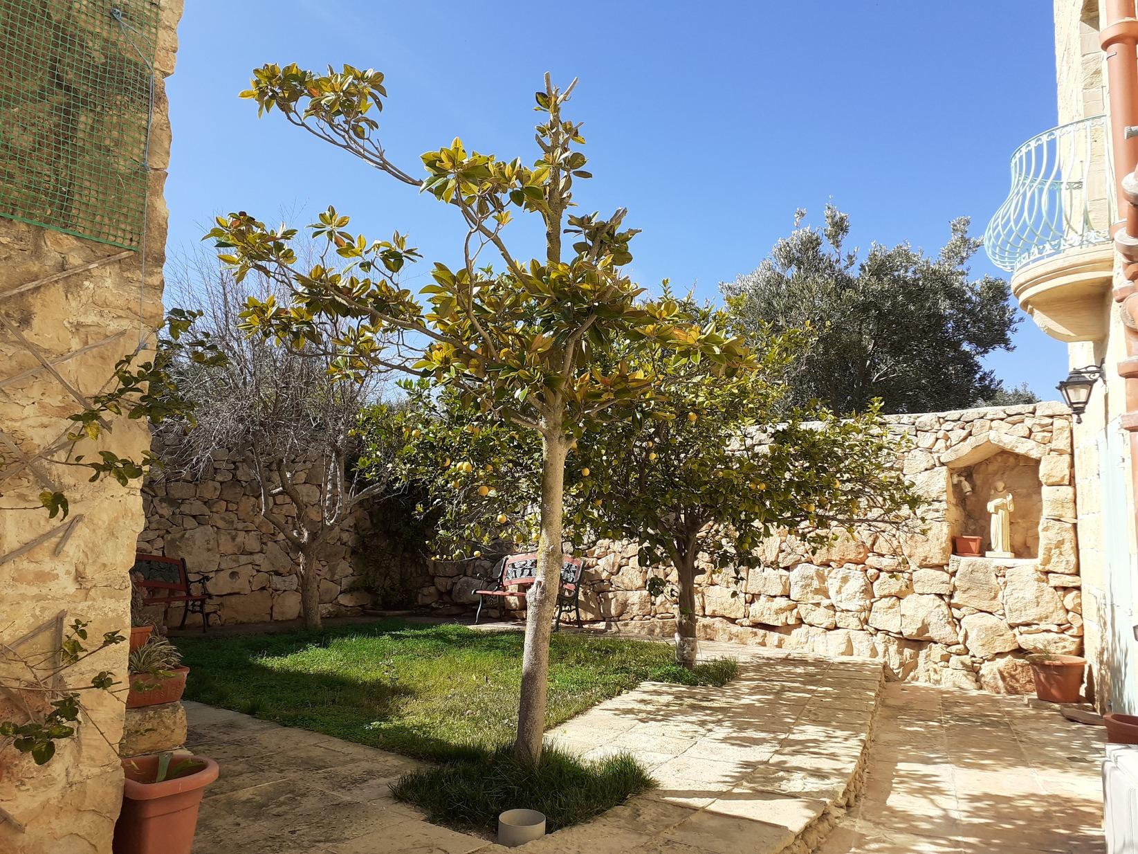4 bed Villa For Sale in Zurrieq, Zurrieq - thumb 24