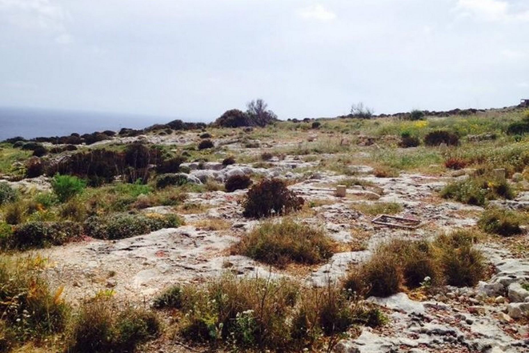 0 bed Site Residential For Sale in Zurrieq, Zurrieq - thumb 5