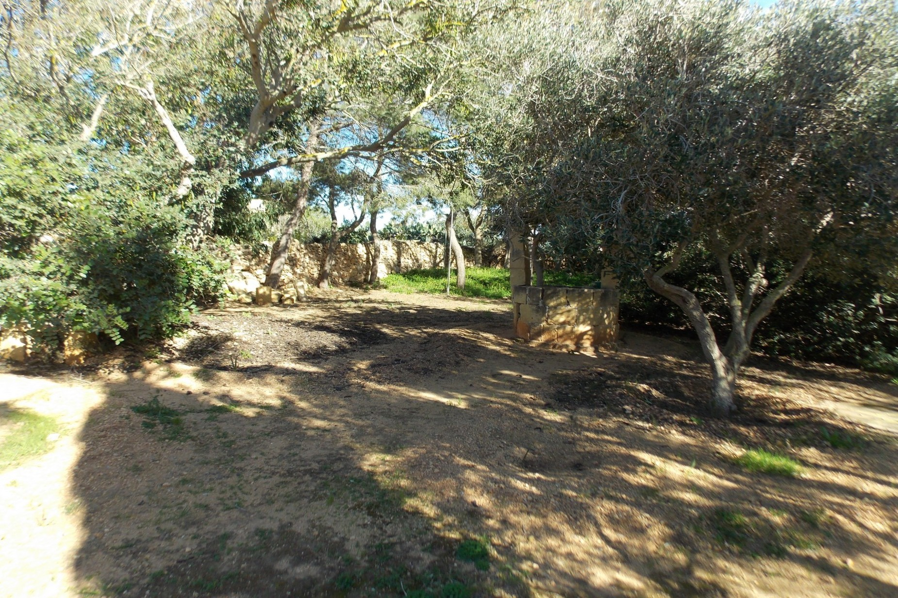 5 bed Farmhouse For Sale in Xaghra, Xaghra - thumb 11