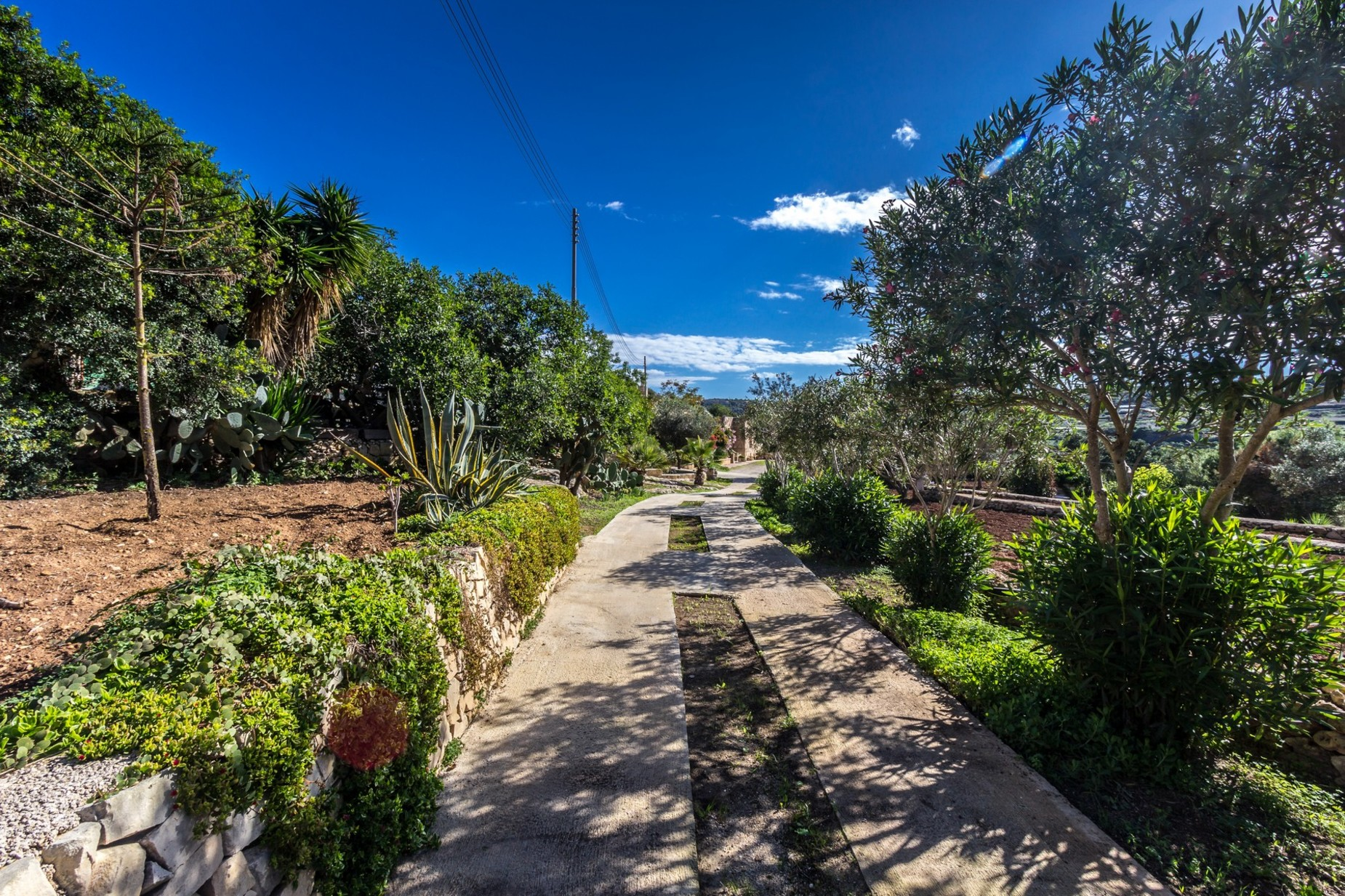 3 bed Farmhouse For Sale in St Paul's Bay, St Paul's Bay - thumb 5
