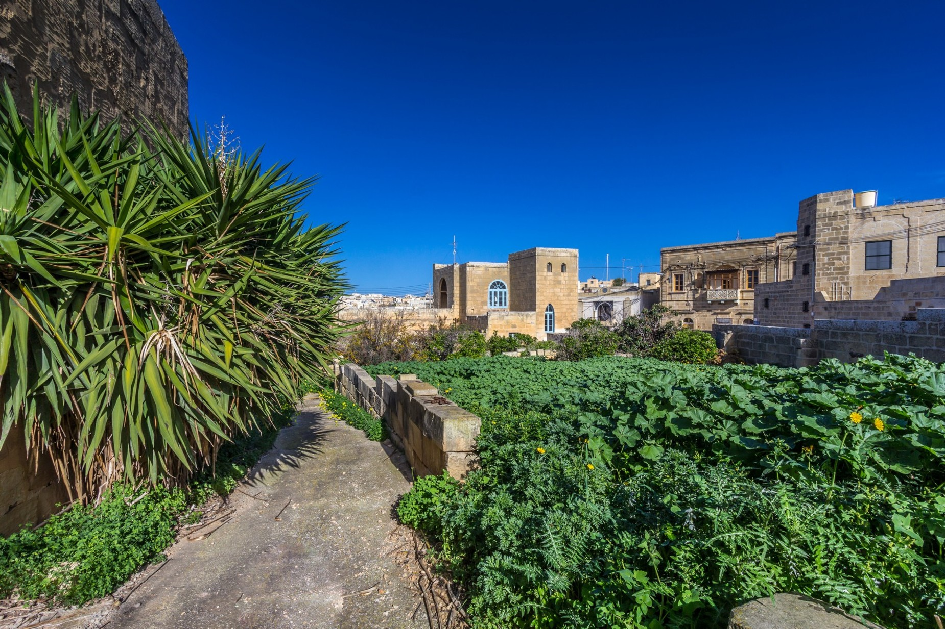 4 bed Farmhouse For Sale in Qala, Qala - thumb 6