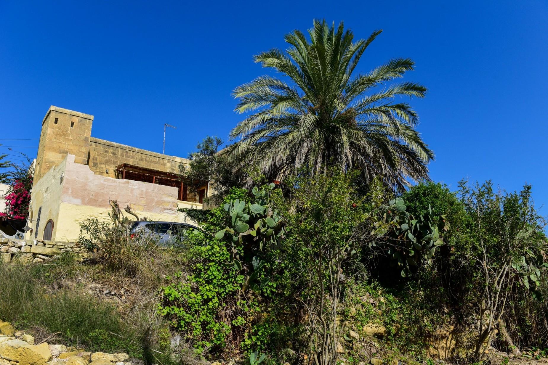 2 bed Farmhouse For Sale in Ghasri, Ghasri - thumb 6