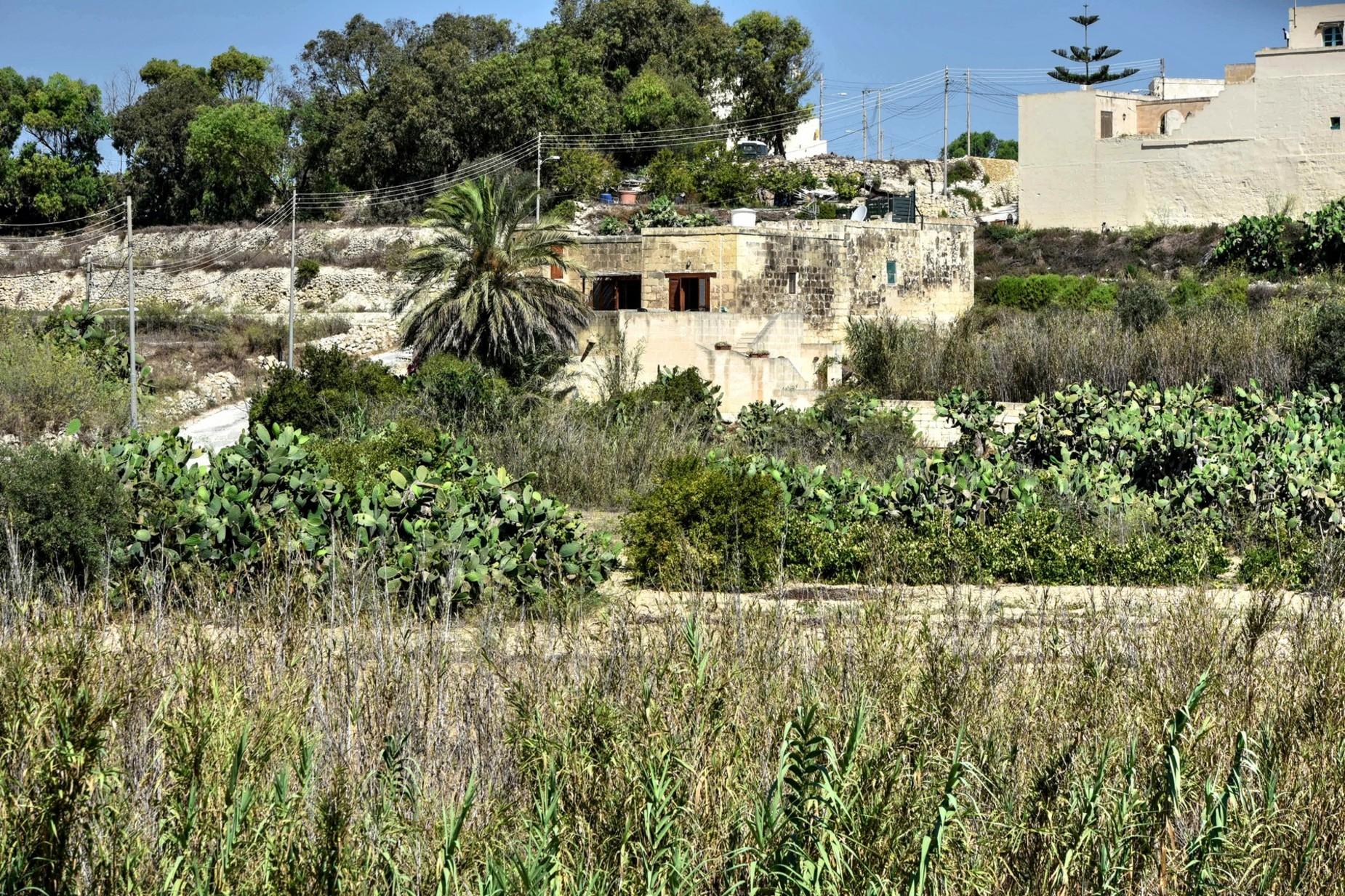 2 bed Farmhouse For Sale in Ghasri, Ghasri - thumb 3