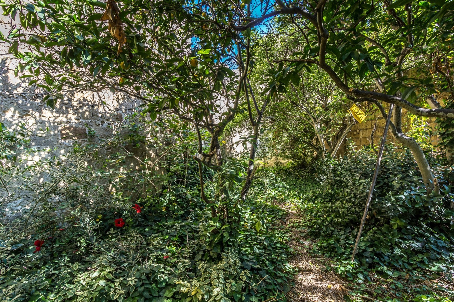 4 bed House of Character For Sale in Lija, Lija - thumb 2