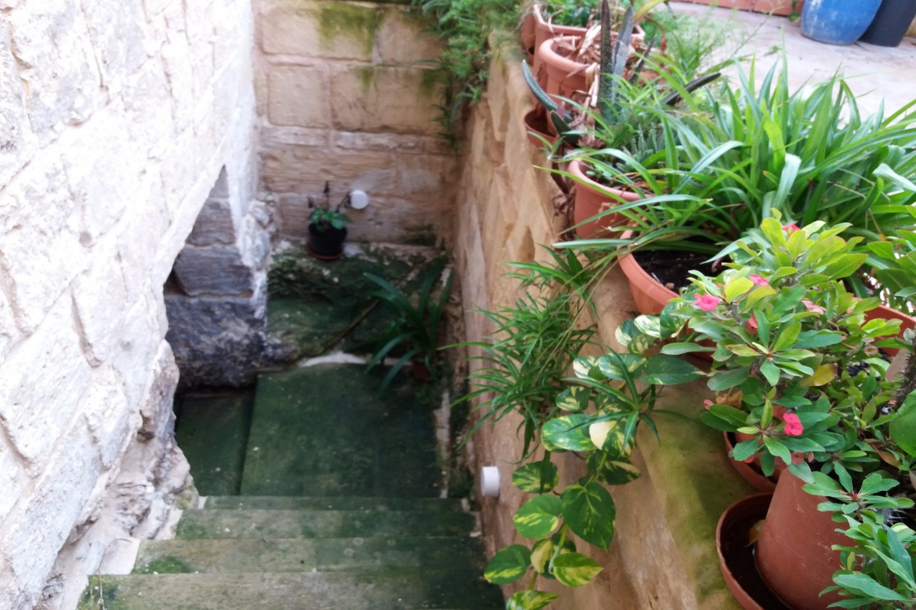 3 bed House of Character For Sale in Qormi, Qormi - thumb 16