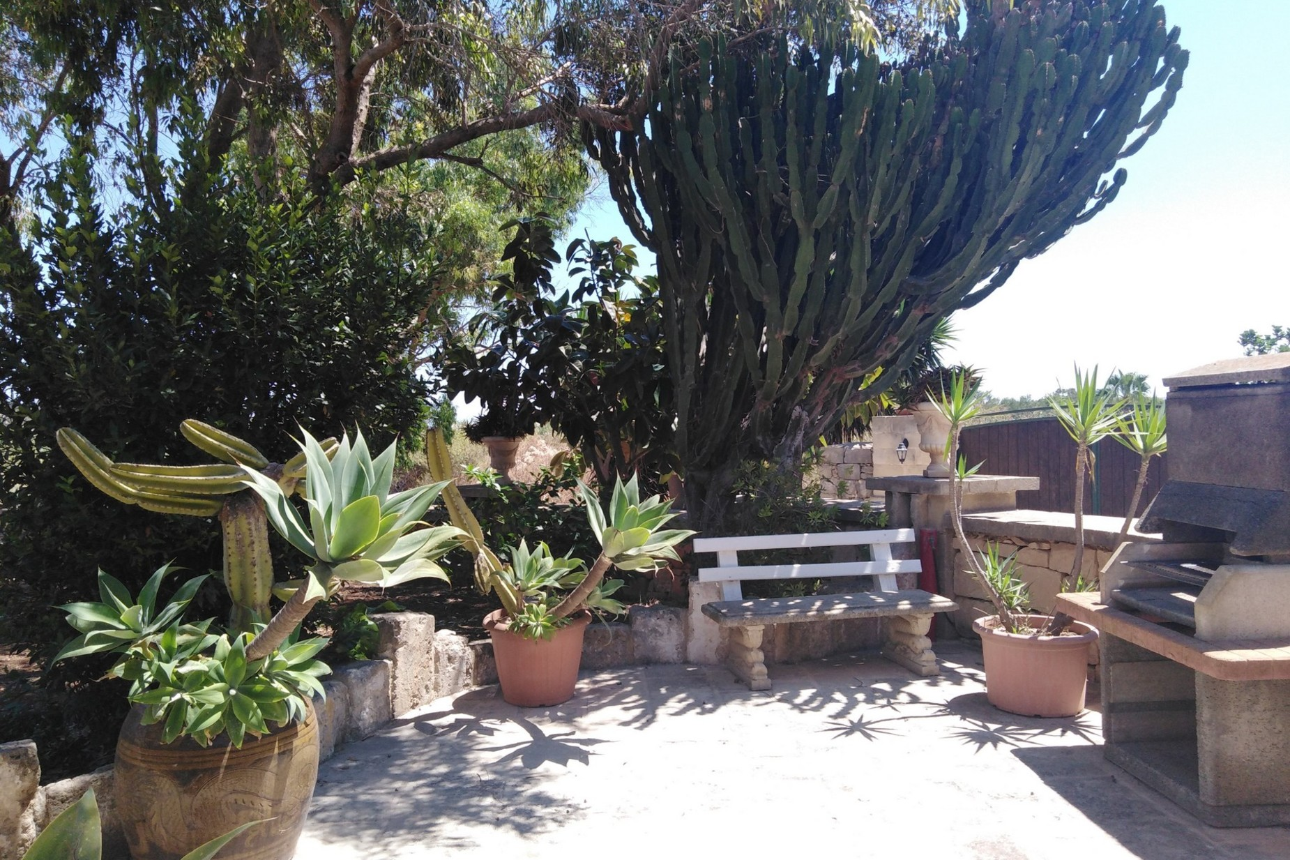 3 bed House of Character For Rent in Mosta, Mosta - thumb 14