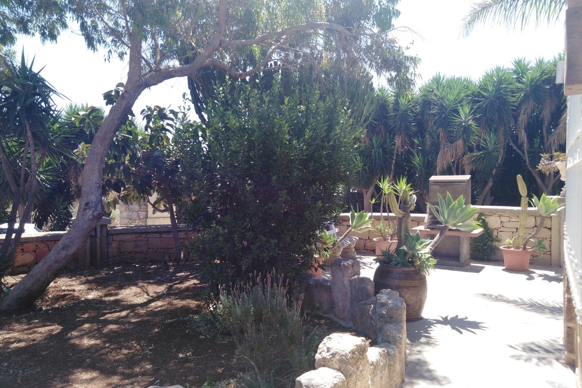 3 bed House of Character For Rent in Mosta, Mosta - thumb 12