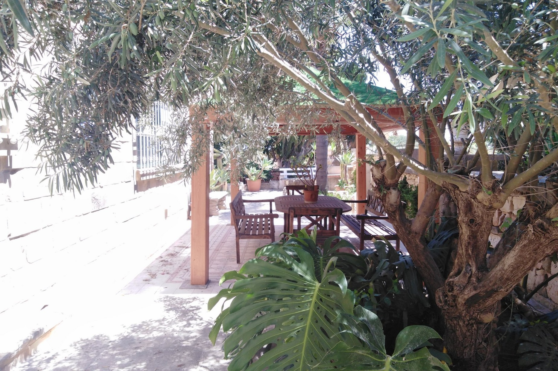 3 bed House of Character For Rent in Mosta, Mosta - thumb 17