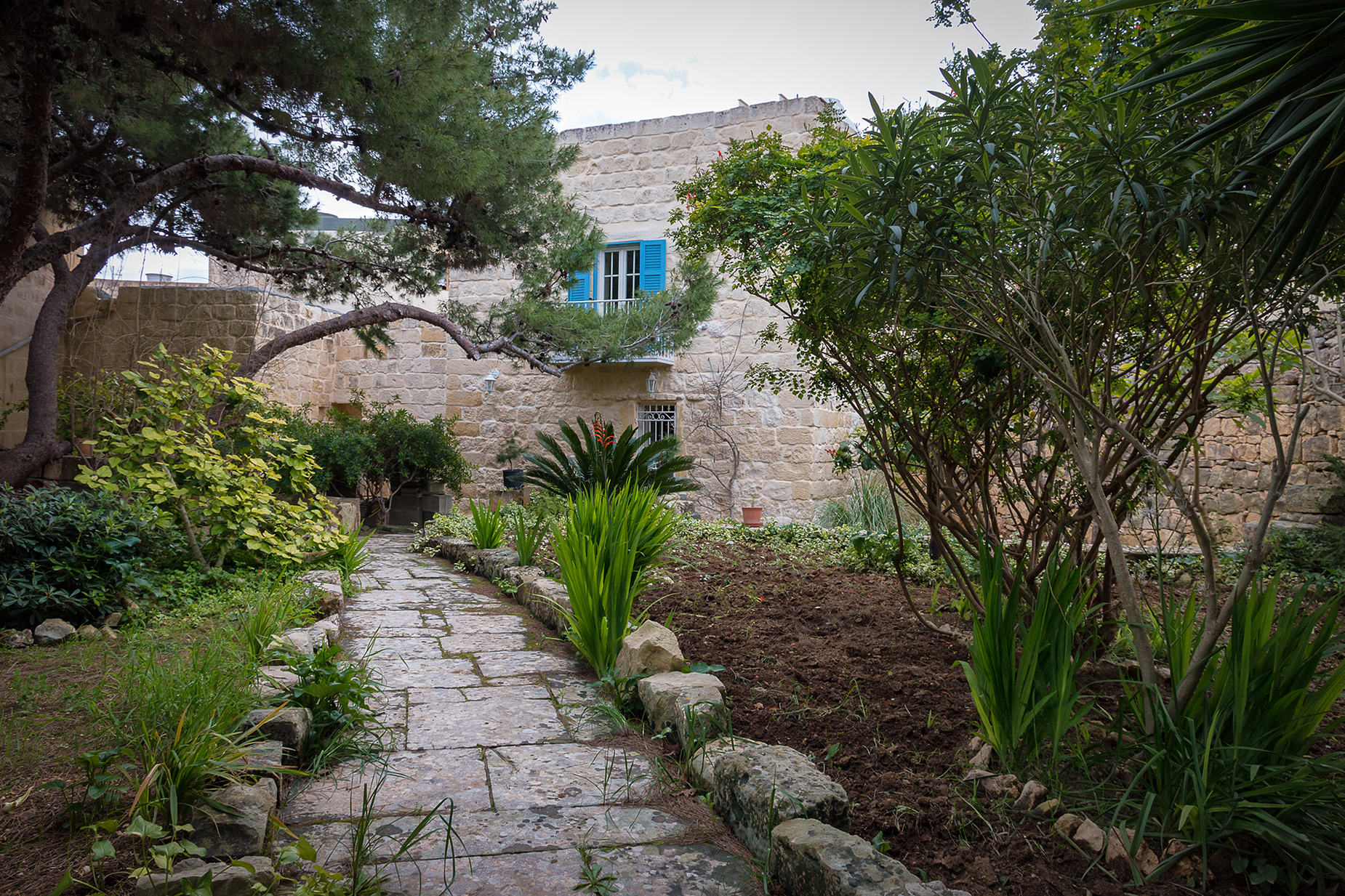 3 bed House of Character For Sale in Mosta, Mosta - thumb 10