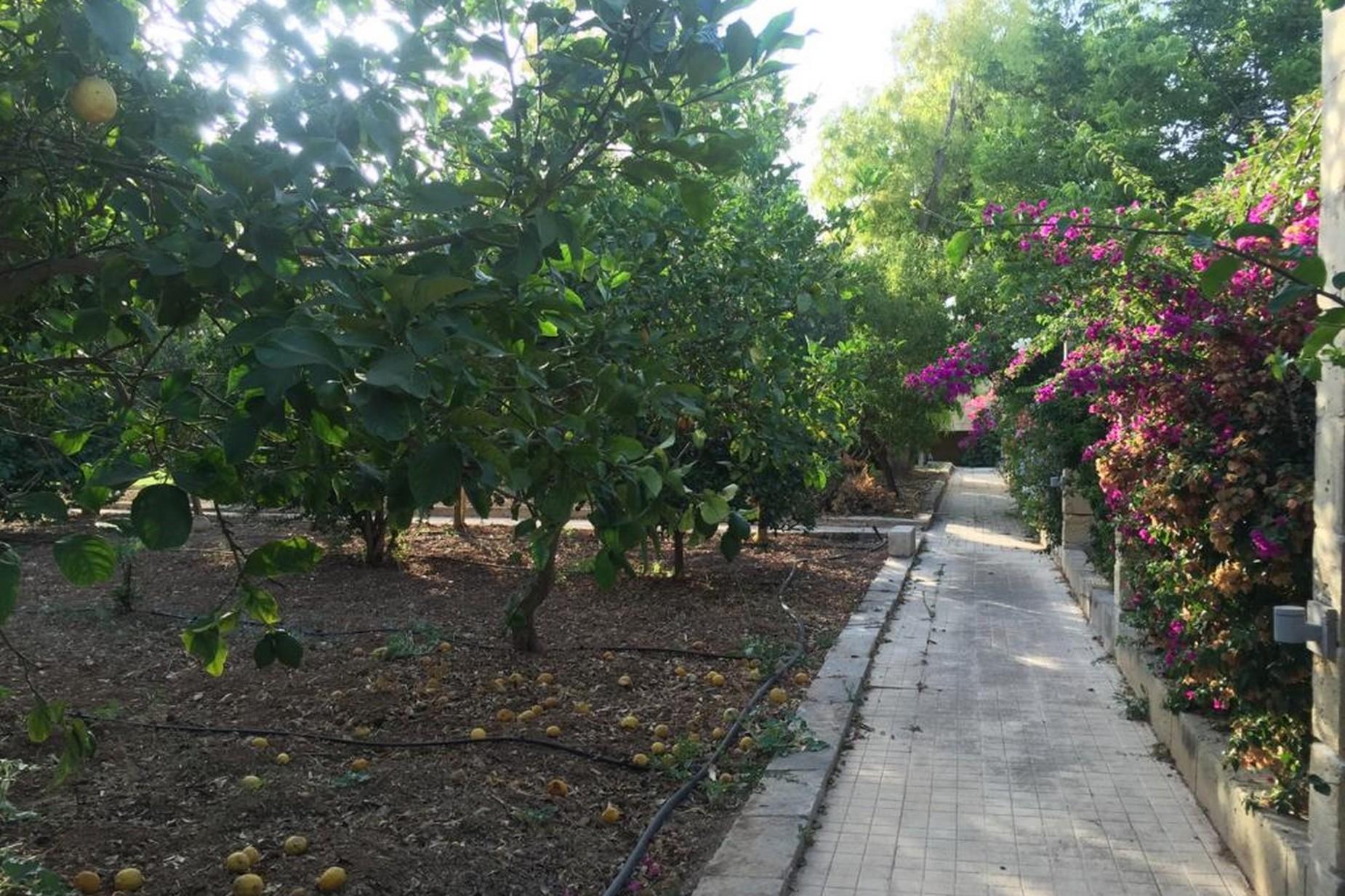 6 bed Villa For Rent in Rabat, Rabat - thumb 8