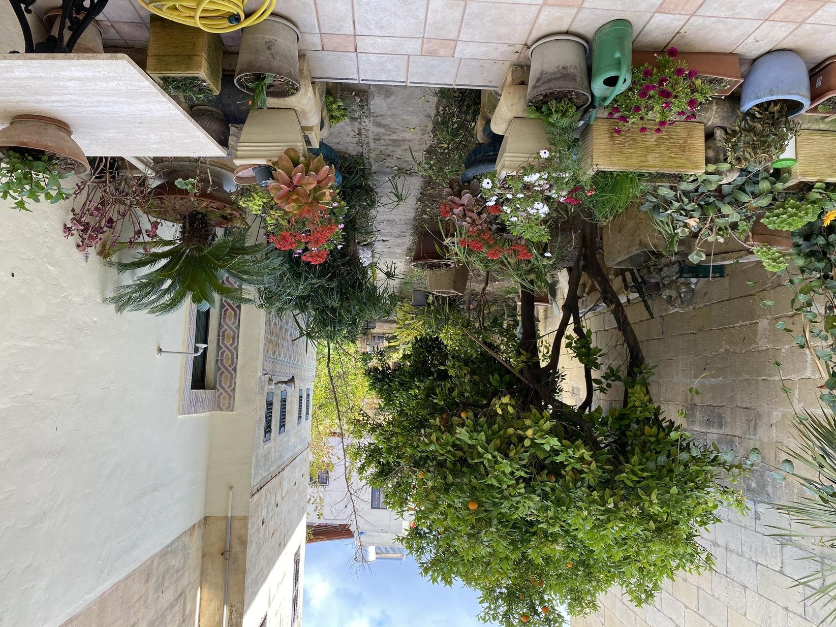 3 bed Terraced House For Sale in Santa Venera, Santa Venera - thumb 3