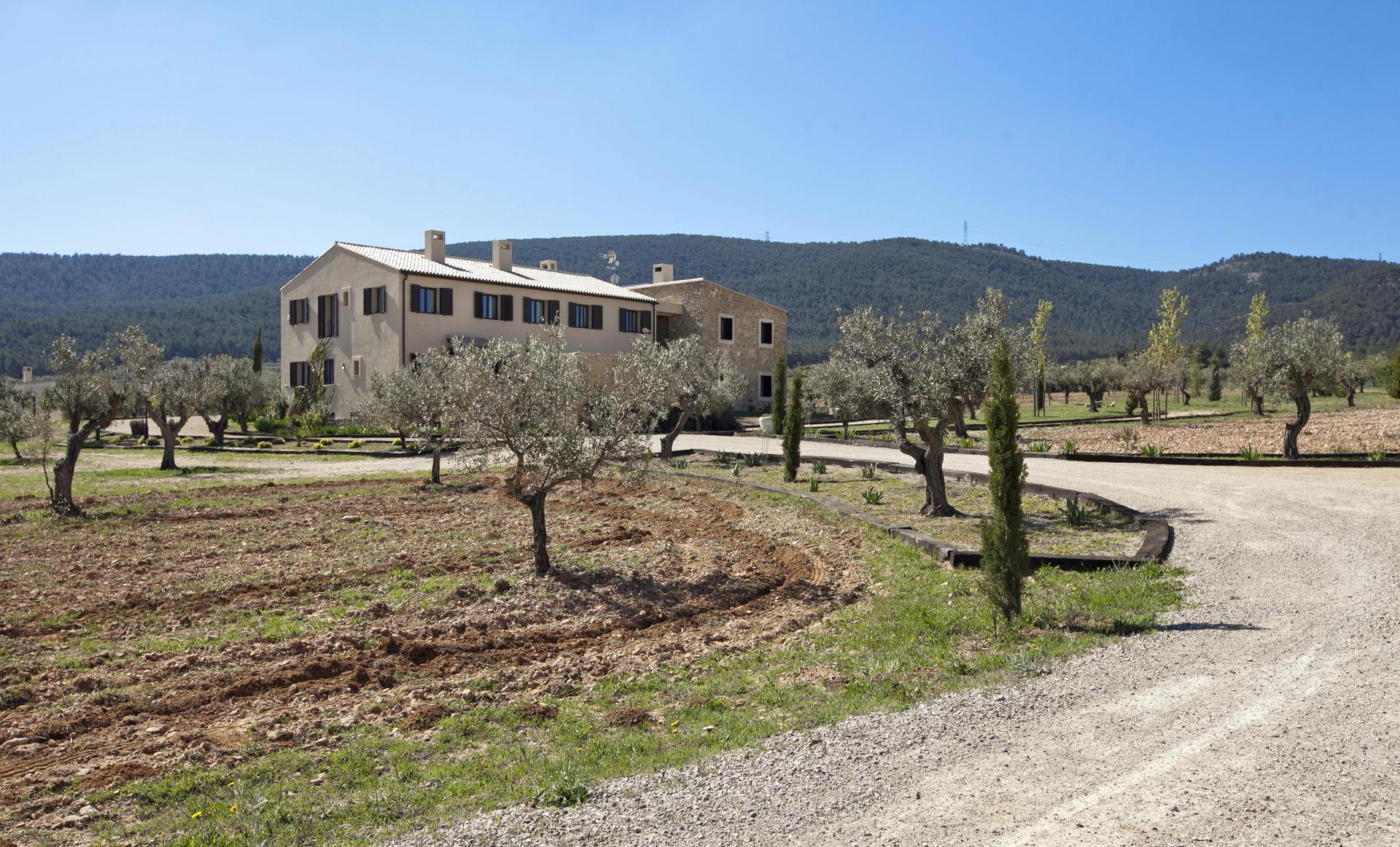 luxury home with olive oil wine vineyard valencia spain