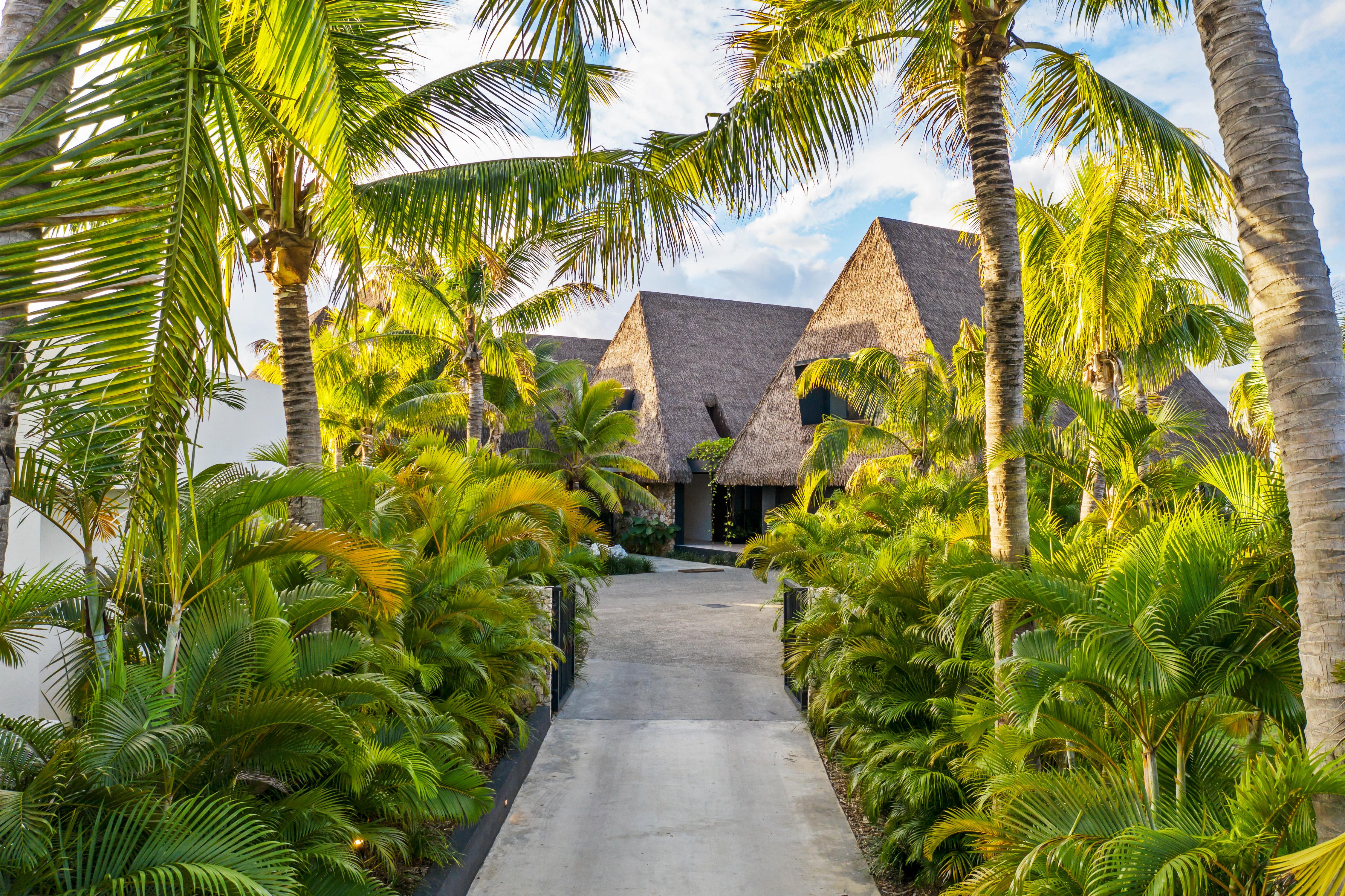 entry to a Tropical Oasis Fijian Estate