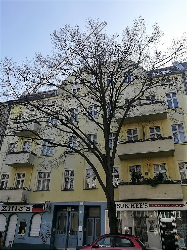 Vacant Renovated 1 Bed Apartment in Great Location