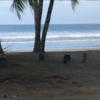 - Beach front Playa Linda
