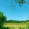 - 109 Hectares Central Pacific Beachfront Land For Sale