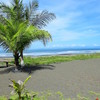 - 5.5 Hectares of Beach Front Property in Bajamar