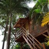 - 10 CAP Five Star Rated Bed and Breakfast, 5 min Walk to Tamarindo Beach