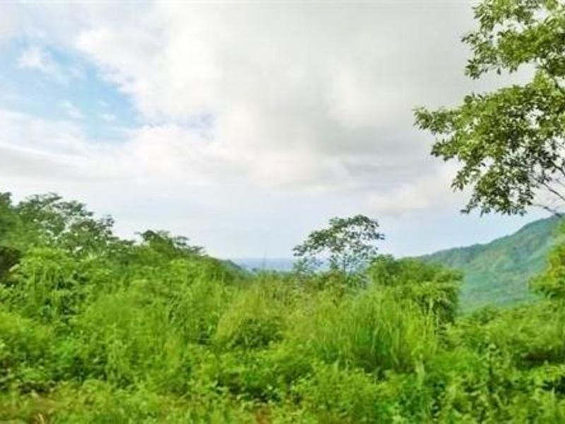 Guanacaste Image 2