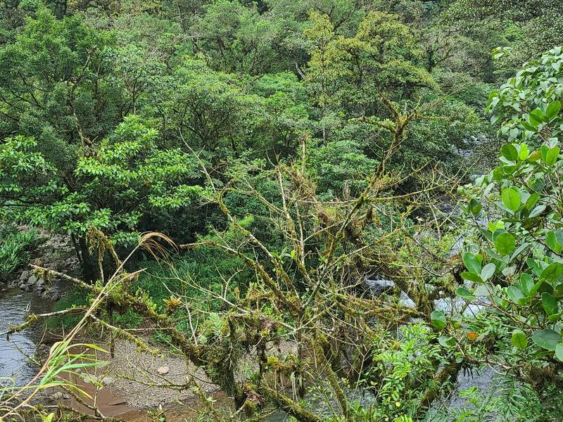 San Ramon Image 6