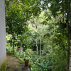 - Three Tiered Property in Perez Zeledon with Views and Waterfall