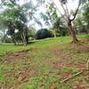 - Osa Peninsula 407 Acre Property