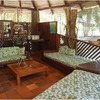 - Flying Crocodile Hotel A True Jungle Experience Near Playa Samara