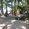 - Hotel Fenix on the Beach