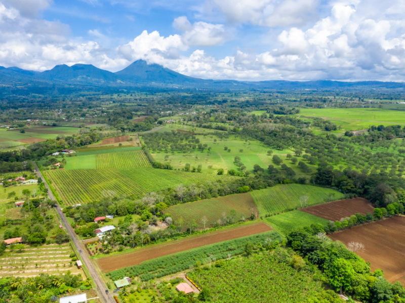 Alajuela Image 6