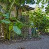 - Flutterby House Turnkey Business walking distance to the Beach
