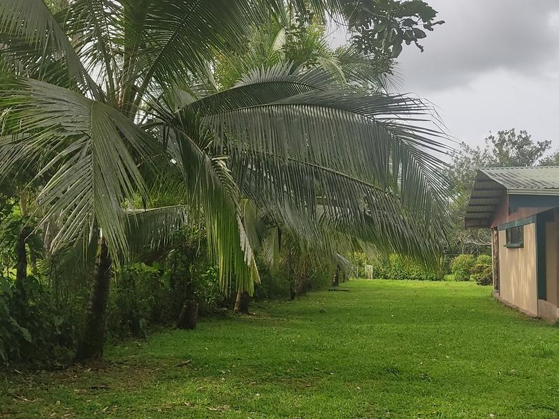 Alajuela Image 0