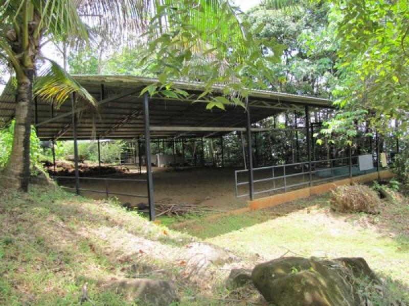 Escalares dominical rental homes costa rica id 19 for Costa rica rental houses