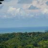 - Cloud Forest Estate