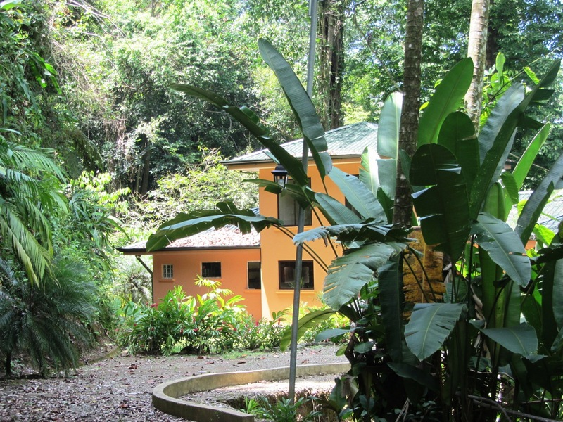Jungle house id 1819 puntarenas costa rica real estate for Jungle house costa rica