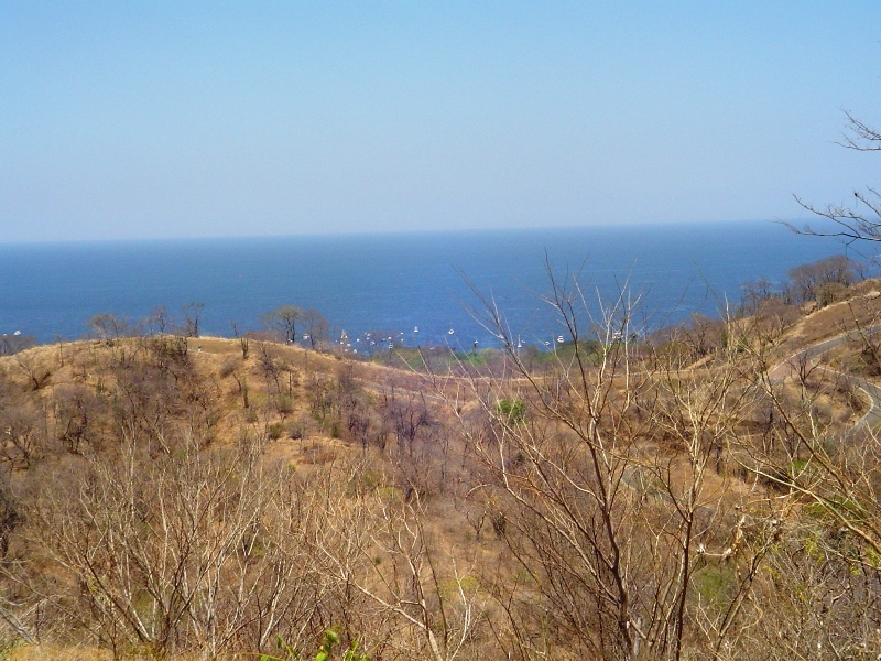 Playas Del Coco Image 3