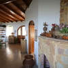 - Birdwatcher Home and Guest Suite